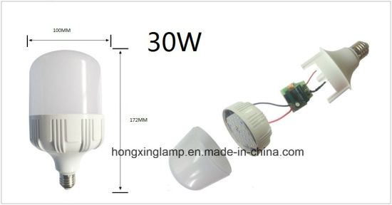 LED High Power Bulb 30W T100