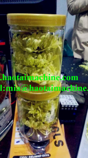 Vacuum Freeze Dryer for Durian, Berries High Quality pictures & photos