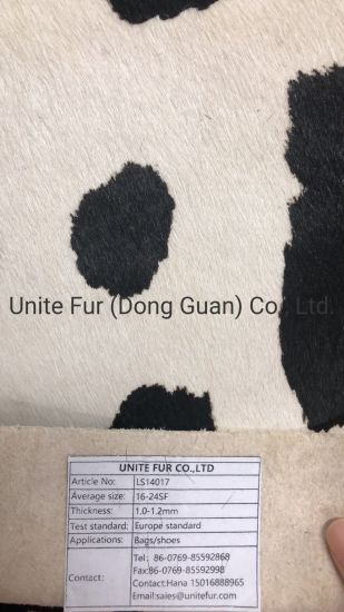 Natural Dairy Cattle Hair Calf Leather for Shoes, Bags, Furniture