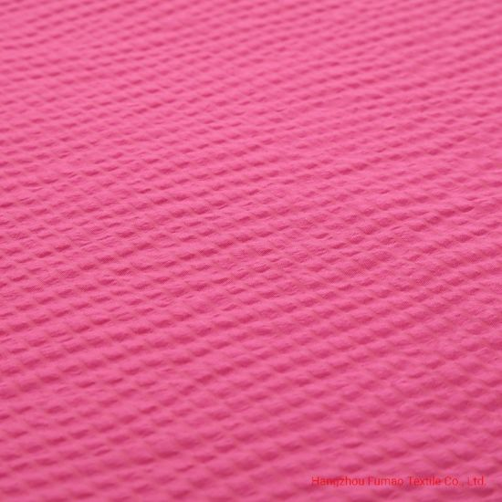 Nylon Polyester Dobby Fabric for Garmrnts pictures & photos