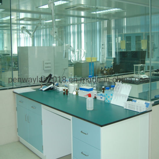 Swell China Wet Chemistry Lab Working Table Work Bench China Lab Theyellowbook Wood Chair Design Ideas Theyellowbookinfo