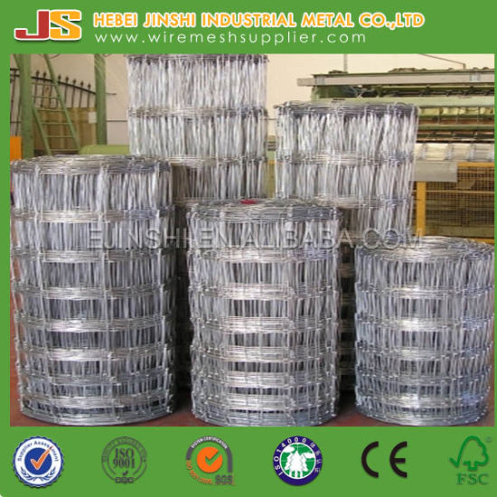 Knot Field Fence Mesh for Animals, Fencing Wire, Cattle Fence pictures & photos