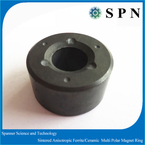 Permanent Ferrite Multipole Magnet Rings for Industry Motors pictures & photos