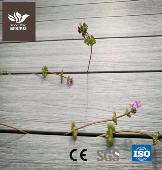 Good Quality WPC Building Material Co-Extrusion Plastic Wood Composite Decking Board