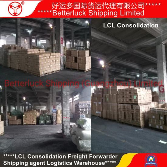 LCL Consolidation Shipping to Italy Europe from China Guangzhou Shenzhen Freight Forwarder agent pictures & photos