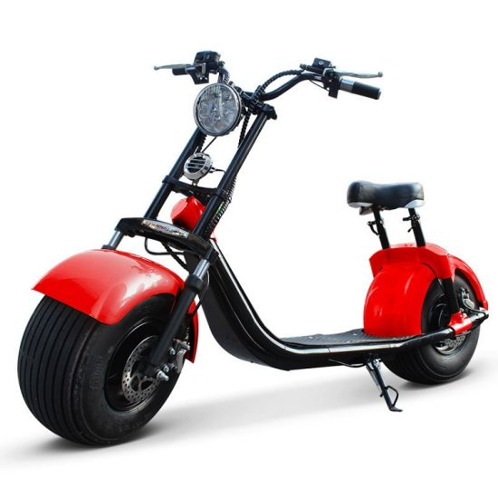 2019 The Most Fashionable Citycoco 2 Wheel Electric Scooter Motorcycle