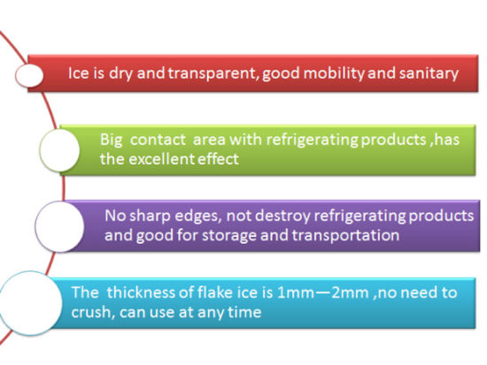 Flake Ice Machine for Fish in Lagos pictures & photos