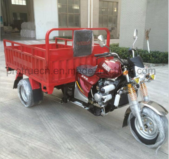 EEC 3 Wheel Motorcycle Tricycle with Cargo pictures & photos