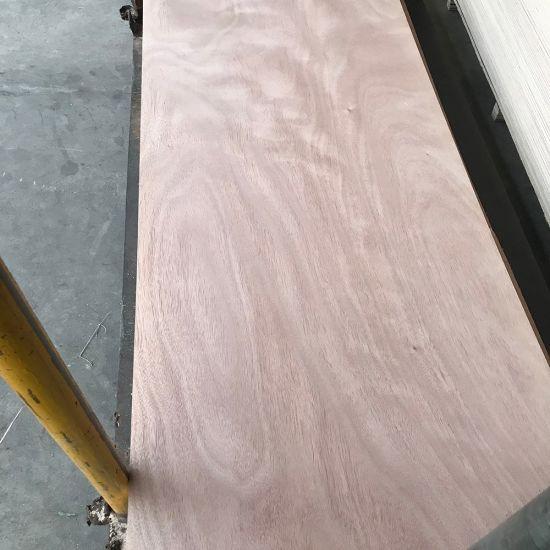 2.7mm Okoume Door Size Plywood/Sapele Plywood Door