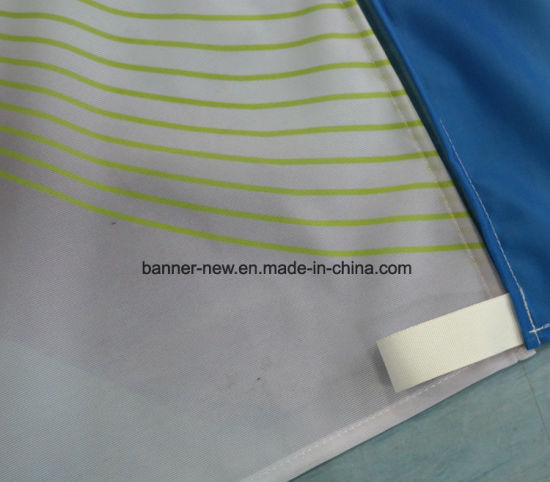 Shiny Full Color Polyester Fabric Banners (SS-SF-88) pictures & photos