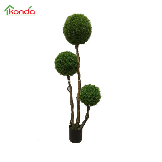 Hight Quality Topiary Tree Grass Boxwood Hedge Plant