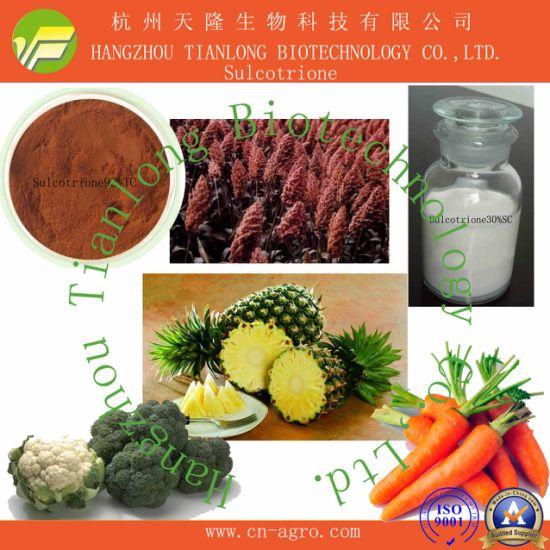 Sulcotrione (98%TC, 150SC, 300SC)-Herbicide