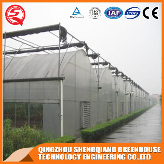 China Manually Controlled Flower Hydroponic Growing Plastic Film Garden Greenhouse
