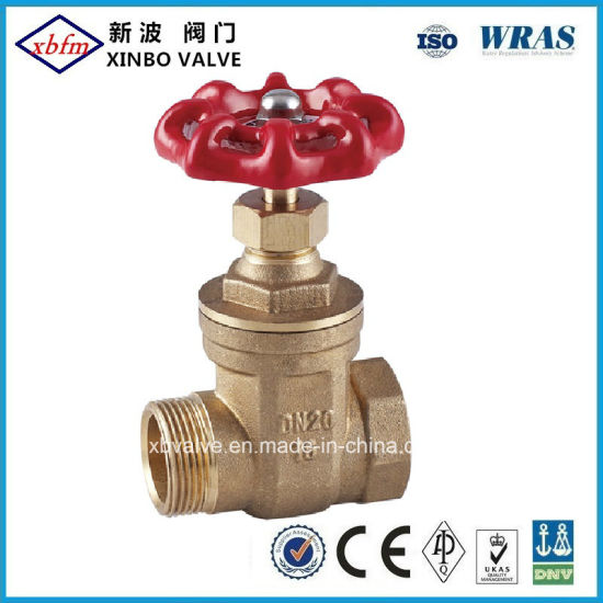Forged Brass Male Gate Valve pictures & photos