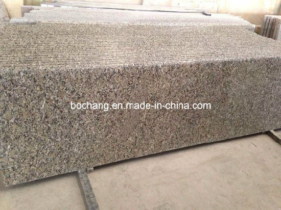 Giallo Fiorito Granite Slab for Granite Countertop pictures & photos
