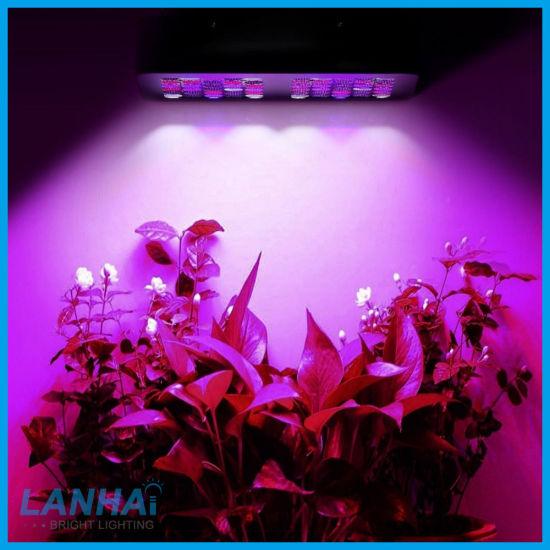 China 1200W Full Spectrum Hydroponic Indoor Plant Lamp