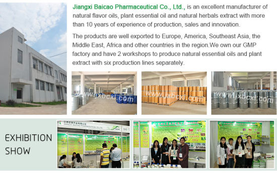 China Aroma Massage Therapeutic Grade Pure Eucalyptus Essential Oil