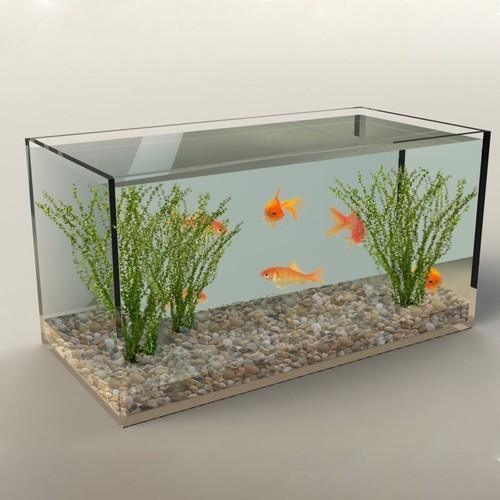 Clear Acrylic Aquarium Fish Tank pictures & photos