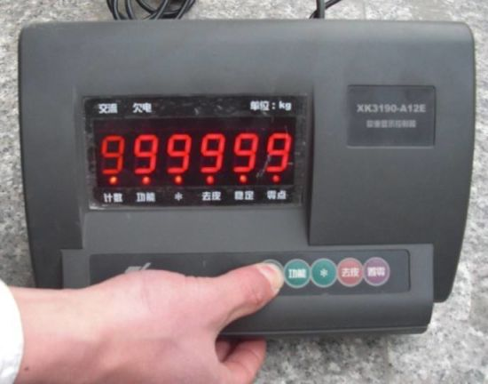 Platform Scale A12 Electronic Weighing Indicator pictures & photos