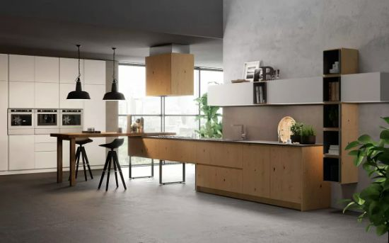 High End Wood Veneer and White Paint Kitchen Cabinets Furniture