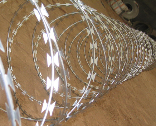 Competitive Price with Best Selling Concertina Razor Wire pictures & photos