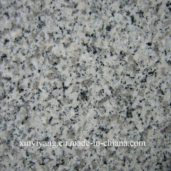Cheap G603 Grey White Granite Paving Stone for Outdoor Decor pictures & photos