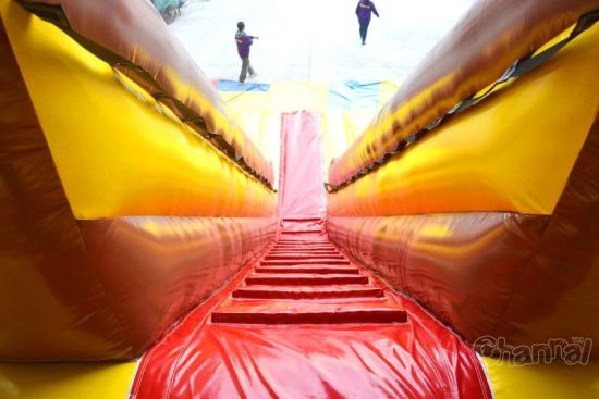 China Commercial Eagle Inflatable Slide Chsl622 pictures & photos