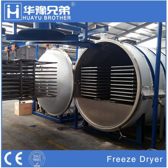 500kgs Mini Industrial Freeze Dryer Price Fruit Drying Vacuum Method pictures & photos