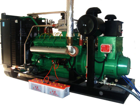1000kVA LPG Electronic Generator Sets pictures & photos