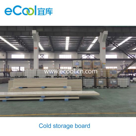 Stainless Steel Skin PU Insulation Panel for The Cold Room Roof/Wall  sc 1 st  Ecool International Trading & China Stainless Steel Skin PU Insulation Panel for The Cold Room ...
