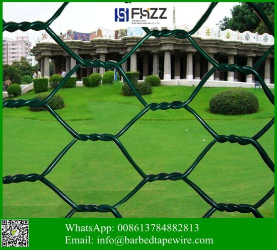 ISO 9001 Chicken Poultry Mesh Hexagonalfence Wire Netting