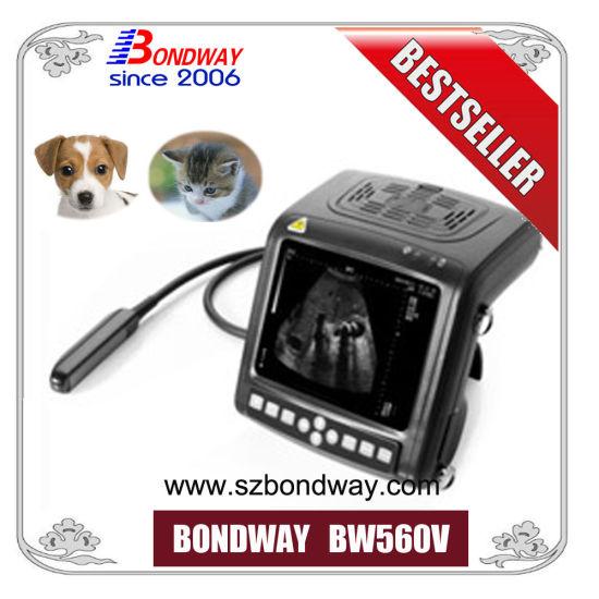 Veterinary Ultrasound Scanner, Veterinary Ultrasound Scan Machine, Veterinary Ultrasound Imaging Machine