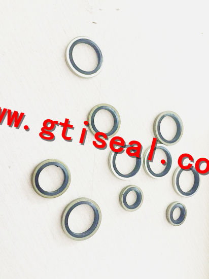 China Hydraulic Bonded Seal Washers with Self Centered - China ...