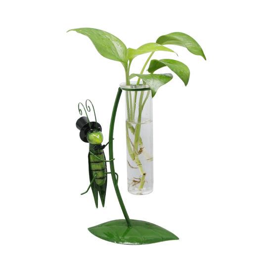 Garden Deco Hydroponic Grasshopper Shape Glass Flower Plant Pot