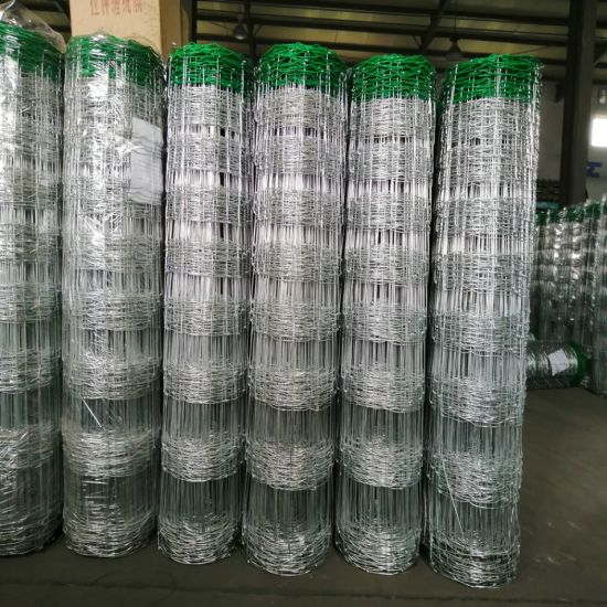 Hinge Joint Cattle Fence with Green Color PVC