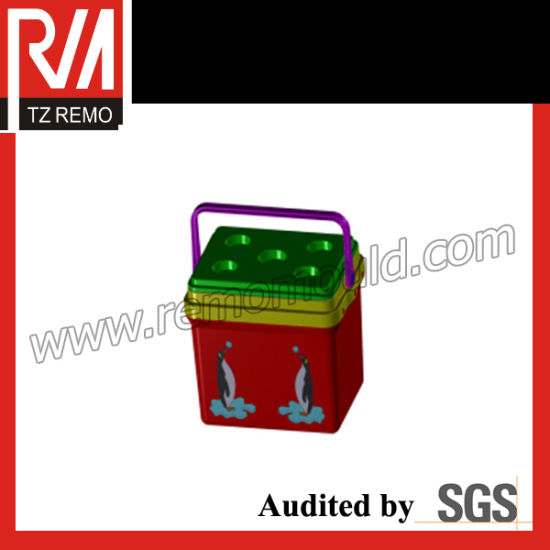 Thermal Box Mould Ice Box Mould pictures & photos