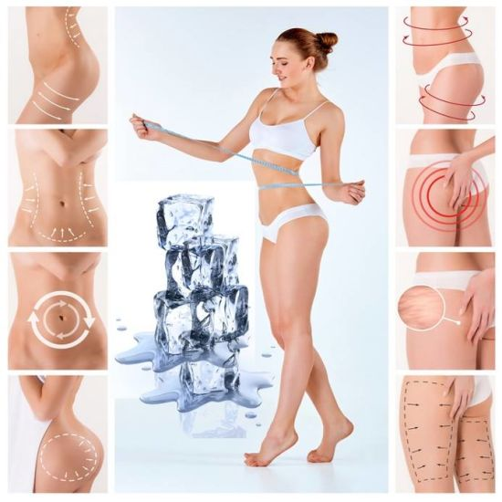 Beauty Equipment Cryolipolysis Fat Cellulite Removal Vacuum Liposutcion Coolsculpting Cryolipolysis Machine pictures & photos