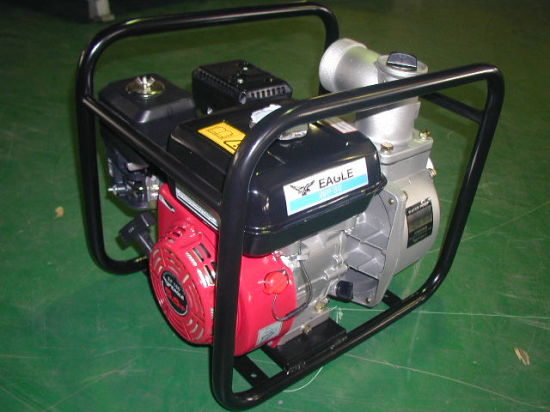 2 Inch, 5.5HP CE Approval Chemical Pump (WH20CP) pictures & photos
