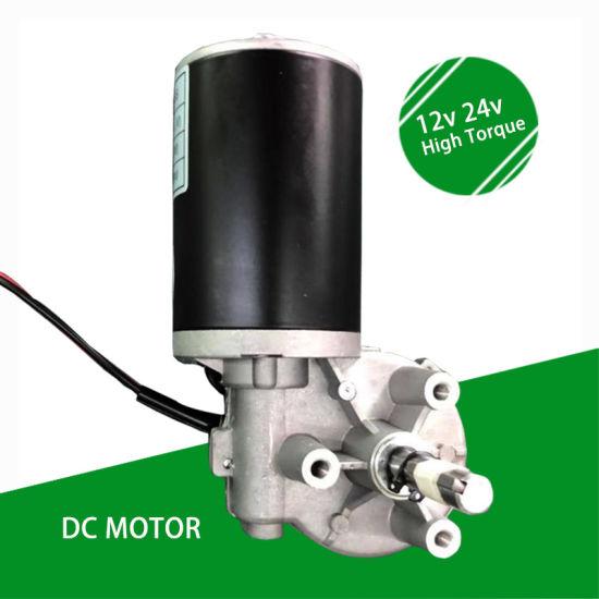 Electric Micro 12V 24V 36V 48V Worm Gear DC Motor with Reducer