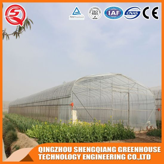 Agriculture Productive High Tunnel Plastic Film Strawberry/Garden Used Greenhouse Hydroponic
