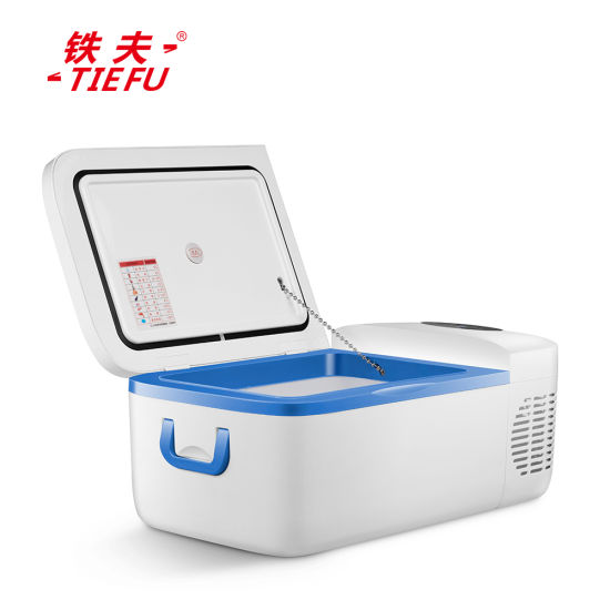 12L Mini Portable Car Refrigerator 12V 220V DC AC for Outdoor Camping Using pictures & photos
