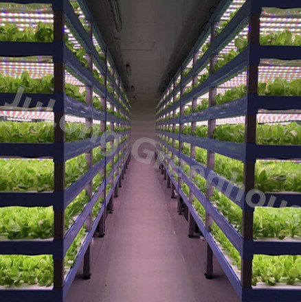 High Technology Moveable Hydroponic System Indoor Gardening Greenhouse for Sale