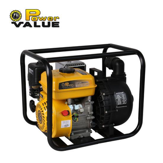 2 Inch 3 Inch Mini Small Petrol Salt Water Pump for Sale