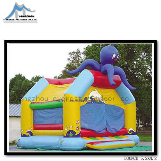 Hot Sale Inflatable Combo, Bounce Houses