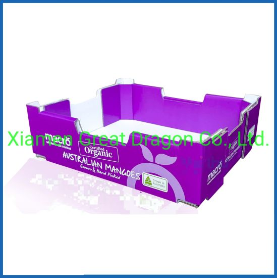 a Wide Variety Sizes of Corrugated Carton Box (CTB049)