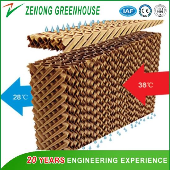 Wooden Paper Evaporative Cooling Pad/Curtain Wet Cooling Pad for Greenhous/Poultry/Swine Farm/Air Cooler