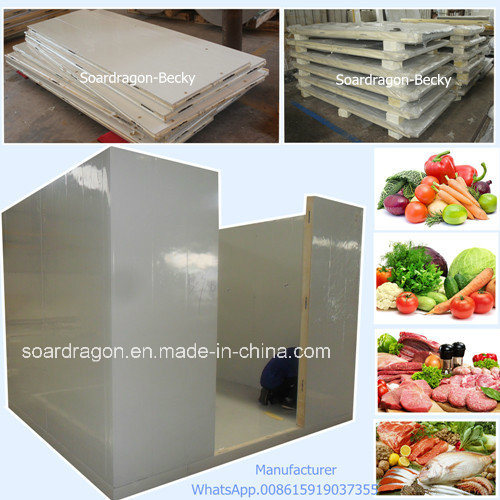 Hot-Sale OEM Cold Room Walk in Freezer for Meat and Vegetable pictures & photos