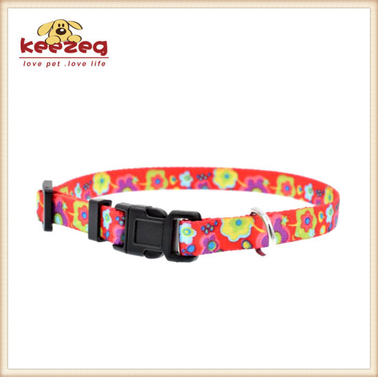 New Style Lovely Nylon Cat Dog Collars for Small Pets, Leash Separately Matching (KC0095) pictures & photos