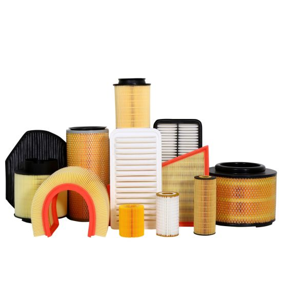 China Factory OEM/ODM Filter Element Air Filter in Stock