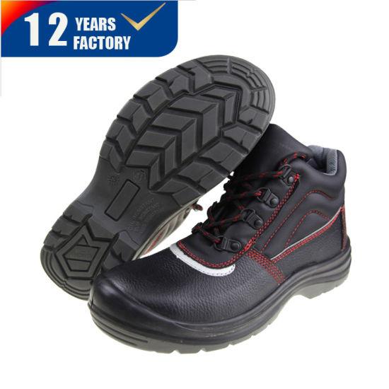Basic Style Safety Shoe Factory Price